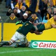 This weekend sees the Springboks take on the Wallabies in Perth in what has to be considered as Heyneke Meyer's toughest test yet in charge. The Socialite finds out...