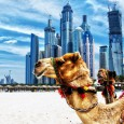 We have an unforgettable Abu Dhabi experience for two up for grabs all thanks to our dear friends at Spree. Check it out… The Socialite is delighted to announce our...
